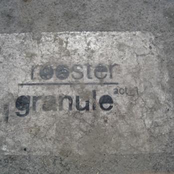 rooster @ granule 3